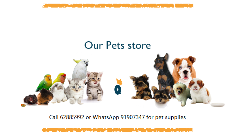 Our Pets store